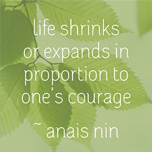 life shrinks image